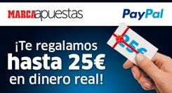 paypal245x132